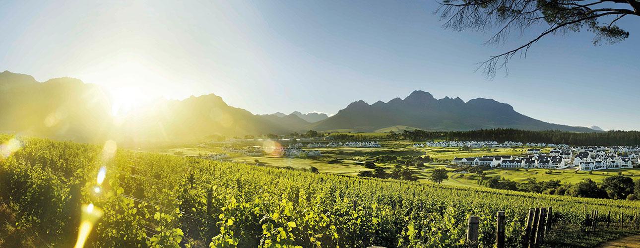 RPA - kraina różnorodnych terroir