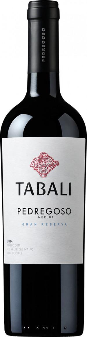 Tabali Pedregoso Merlot Gran Reserva 2017